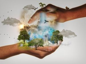 Ecobioebro y el medio ambiente