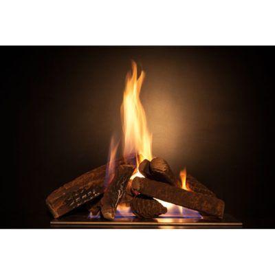 Vista quemar troncos y piñas