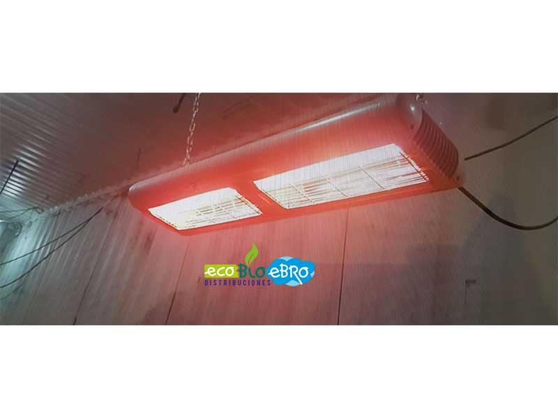 Calefactores-dobles-infrarrojos-para-granjas-ecobioebro