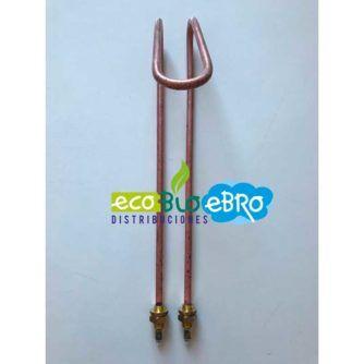ambiente-resistencia-idrogas-2000w-ecobioebro