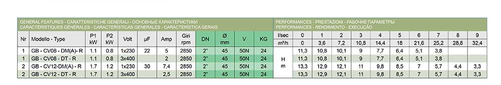 "ficha-tecnica-Bomba-Vortex-0'8kW.-Salida-2""-con-boya-(GB-CV08-DM-AR)-ecobioebro"