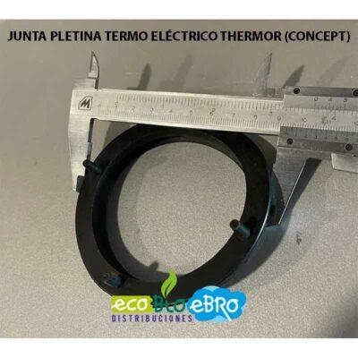 JUNTA-PLETINA-TERMO-ELÉCTRICO-THERMOR-(CONCEPT)-ecobioebro